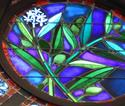 13a Rose window front-2olive